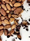 Cacao beans and nibs. On a white background royalty free stock photo