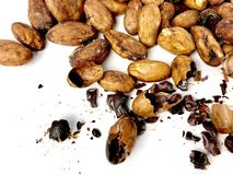 Cacao beans and nibs. On a white background royalty free stock photography