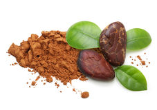 Cacao beans and powder isolated royalty free stock images