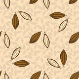 Cacao beans seamless pattern. Chocolate background. Royalty Free Stock Image