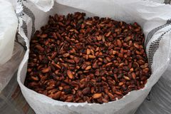 Cacao Beans Stock Photos
