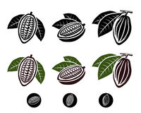 Cacao beans set. Vector. Illustration Stock Photography