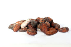 Cacao beans on white background Royalty Free Stock Photos