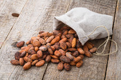 Cacao beans Royalty Free Stock Photo