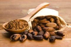 Cacao (cacao) bonen royalty-vrije stock foto's