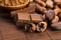 Cacao (cacao) bonen stock afbeelding