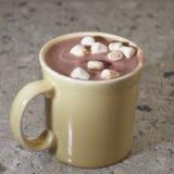 Cacao caldo Fotografia Stock Libera da Diritti