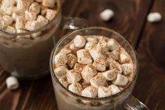 Cacao caliente del invierno con las melcochas Imagen de archivo