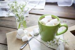 Cacao chaud avec des guimauves dans la tasse verte Photographie stock libre de droits