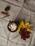 Cacao chaud avec la guimauve, la cannelle et le potiron Fudfoto d'automne, mode de vie, boisson délicieuse chaude d'automne Photos libres de droits