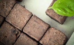 cacao crudo orgánico - probando los cubos sanos del caramelo - modele la opinión superior de la textura del adorno Fotografía de archivo libre de regalías