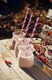 Cacao de la leche imágenes de archivo libres de regalías
