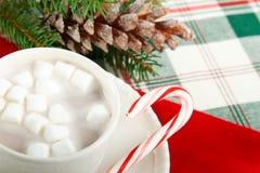 Cacao del chocolate caliente con el bastón de caramelo Foto de archivo