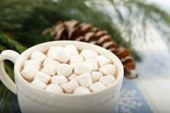 Cacao del chocolate caliente con las melcochas Foto de archivo libre de regalías