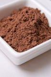 Cacao della polvere Fotografia Stock