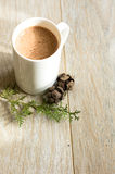 Cacao drink in the mug Stock Photography