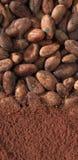 Cacao e fave Obraz Stock