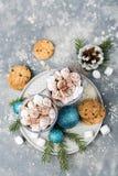 Cacao en koekjes hoogste mening Royalty-vrije Stock Afbeeldingen