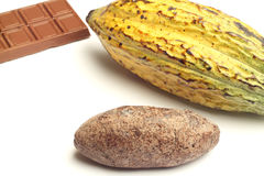 Cacao fruit, chocolate and cocoa bread Royalty Free Stock Photos