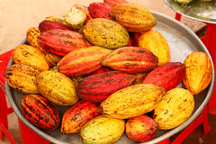 Cacao fruit close up photo. On market place Royalty Free Stock Photo