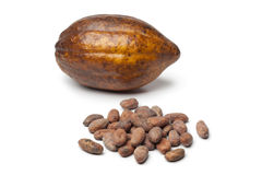 Cacao fruit and cocoa beans Stock Photography
