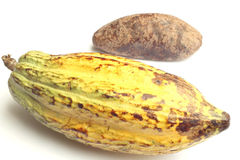 Cacao fruit and cocoa bread Stock Images