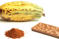Cacao fruit, cocoa powder and chocolate Stock Images