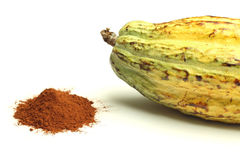 Cacao fruit and cocoa powder Stock Images