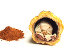 Cacao fruit and cocoa powder Stock Photo