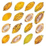 Cacao fruit, raw cacao beans, Cocoa pod isolated on white backgr Royalty Free Stock Photos