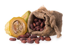Cacao fruit, raw cacao beans, Cocoa pod on white background Royalty Free Stock Images