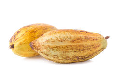 Cacao fruit, raw cacao beans, Cocoa pod on white background Royalty Free Stock Photo