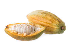 Cacao fruit, raw cacao beans, Cocoa pod on white background. Stock Photography