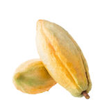 Cacao fruit, raw cacao beans, Cocoa pod on white background. Royalty Free Stock Images