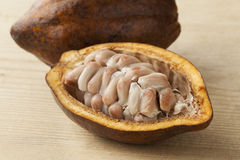 Cacao fruit and raw cocoa beans in the pod. Cacao fruit and  raw cocao beans in the pod close up Royalty Free Stock Photo