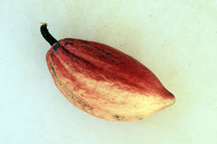 Cacao, grondstof voor de vervaardiging van chocolade Stock Foto's