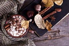 Cacao met heemst Stock Afbeelding