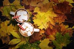 Cacao met heemst en wafeltjebroodjes tegen de achtergrond van de herfstbladeren stock fotografie