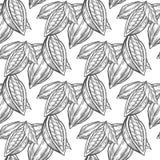 Cacao, modello senza cuciture di vettore di schizzo disegnato a mano dei fagioli del cacao Fotografie Stock