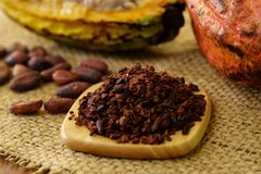 Cacao nibs and raw cocoa fruit, cacao beans on background royalty free stock photography