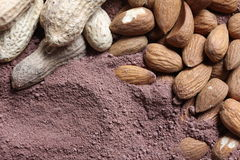 Cacao and nuts Royalty Free Stock Image
