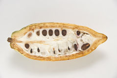 cacao owoców Fotografia Royalty Free