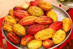 Cacao owoc zakończenie w górę fotografii Zdjęcie Royalty Free