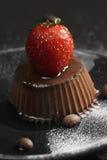 Cacao panna cotta closeup Stock Images