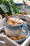Cacao picante con las melcochas, el canela y las galletas Foto de archivo libre de regalías