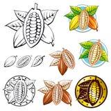 Cacao pods Stock Photos