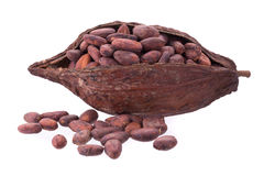Cacao pods and beans isolated on white backgroun Stock Photos