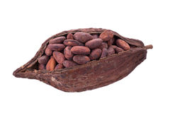 Cacao pods and beans isolated on white backgroun Royalty Free Stock Photography