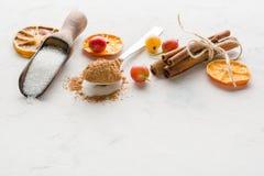 Cacao in polvere in un cucchiaio con cannella e il sitrus asciutto Un'alta chiave Fotografia Stock Libera da Diritti