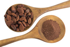 Cacao powder and cacao beans  presented in a wooden spoon Stock Photography